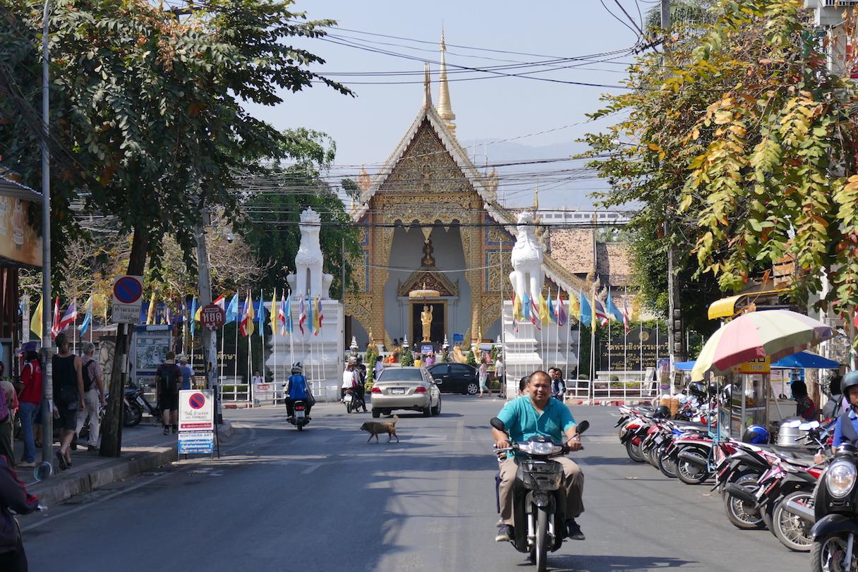 Wat Chedi Luang mitten in Chian Mai