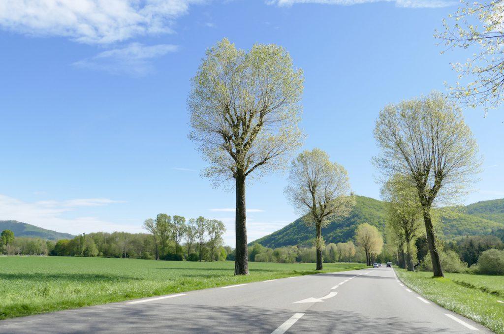 Unterwegs im Elsass