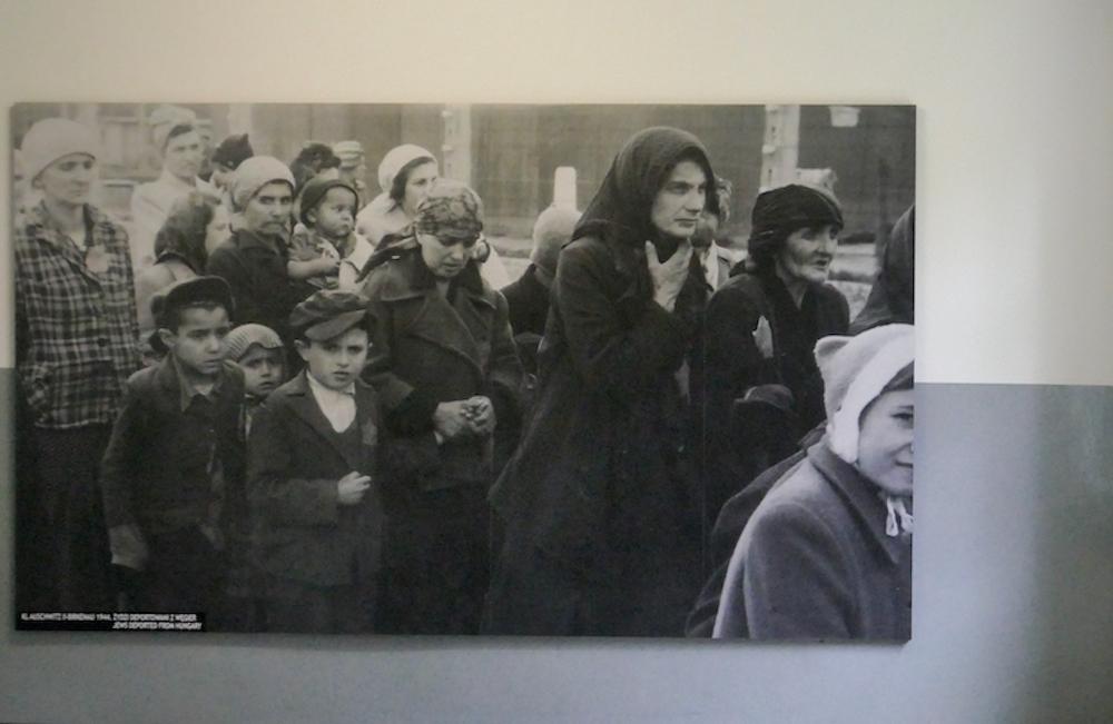 Auschwitz, Ankunft im KZ