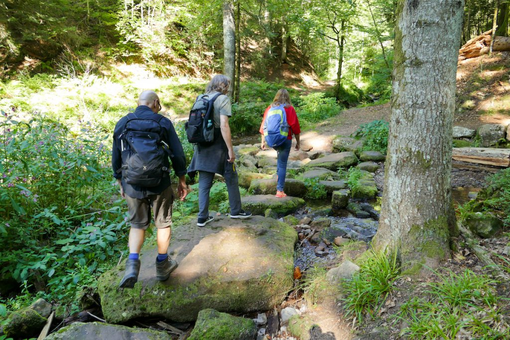 Bad Peterstal-Griesbach, Yoga Walk in der Wilden Rench