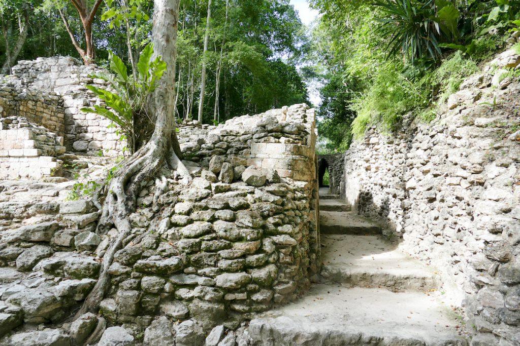 Becan, eine Mayastaette mitten im Dschungel