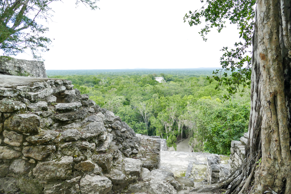 Calakmul, eine faszinierende Mayastaette
