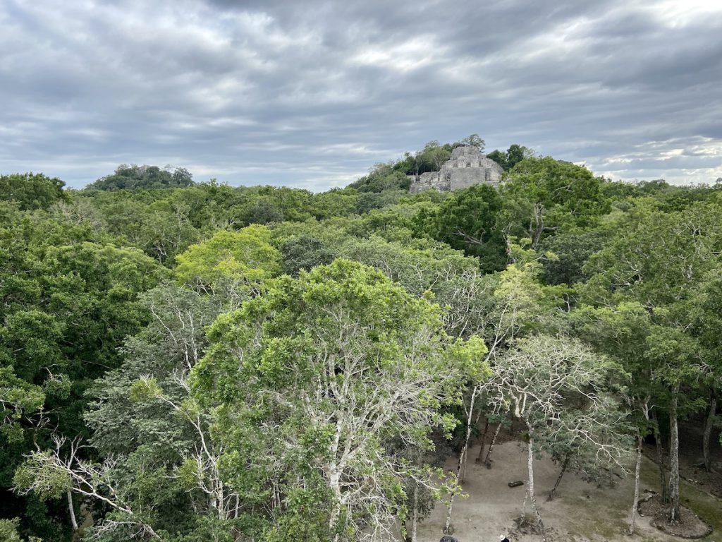Calkmul, Ruinen mitten im Dschungel