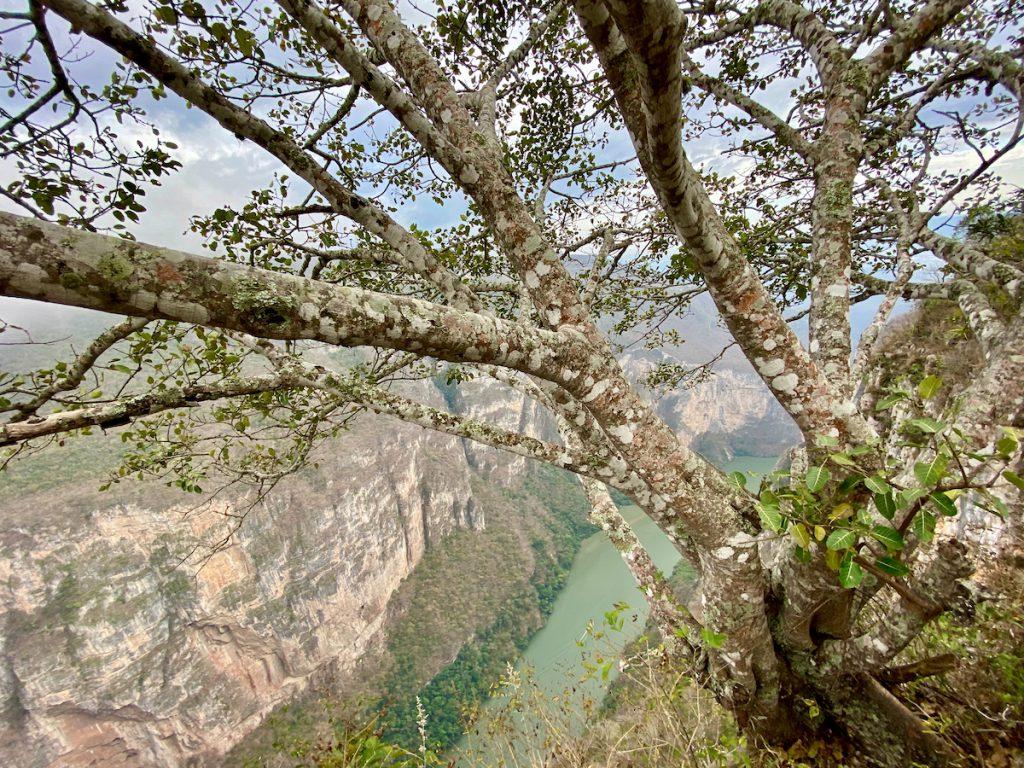 Canyon del Sumidero, fantastische Aussicht auf das Canyon