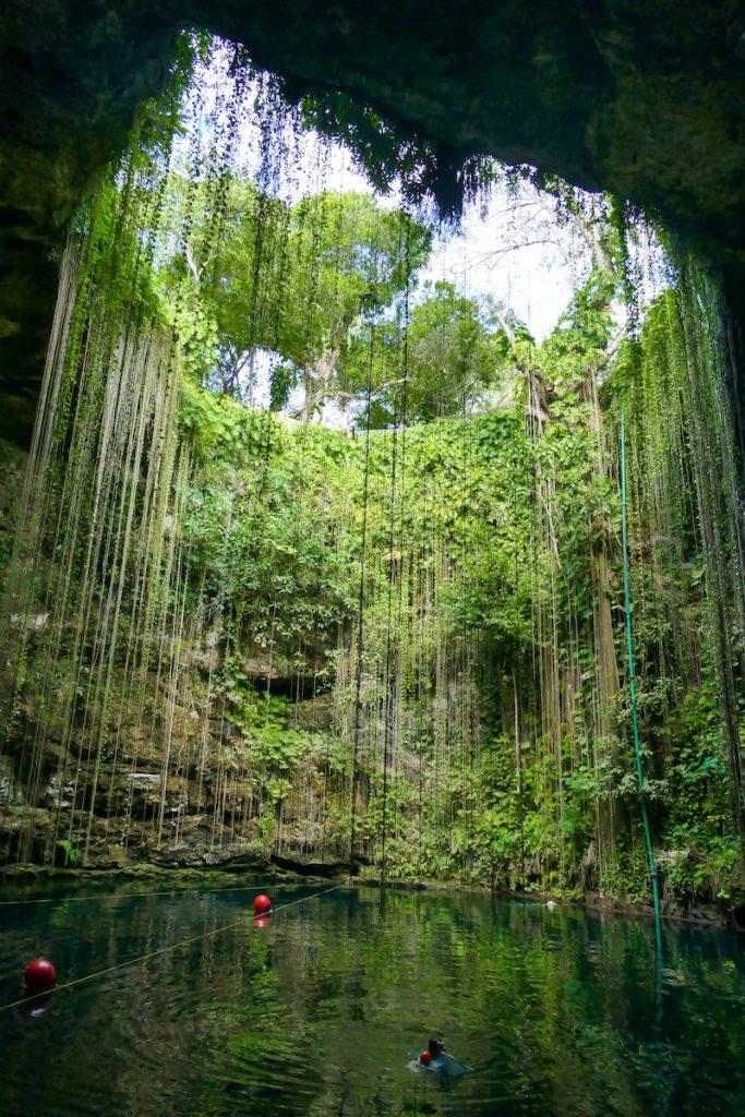 Cenote Ik Kil, eine wunderschoene Cenote