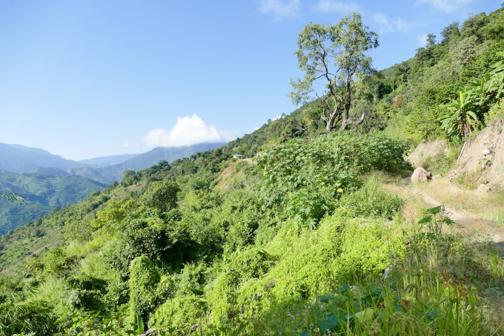 Chin State, Wanderung Tag 3, auf nach Mindat
