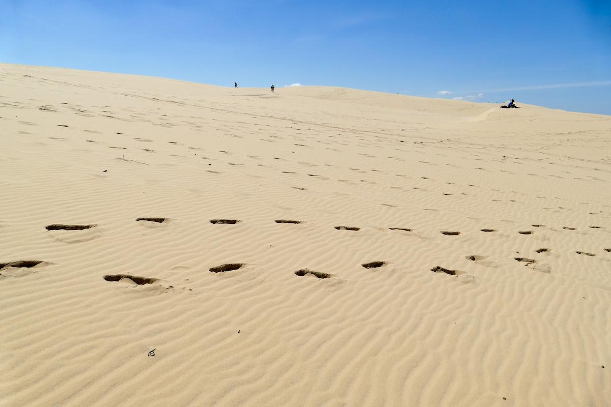 Sahara-Feeling