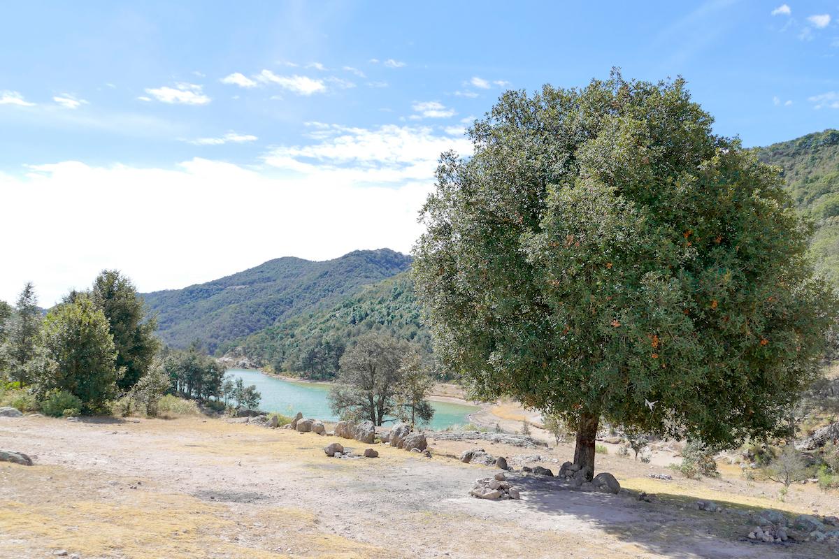 Guanajuato, Santa Rosa, Presa de Peralillo, Staudamm von Peralillo