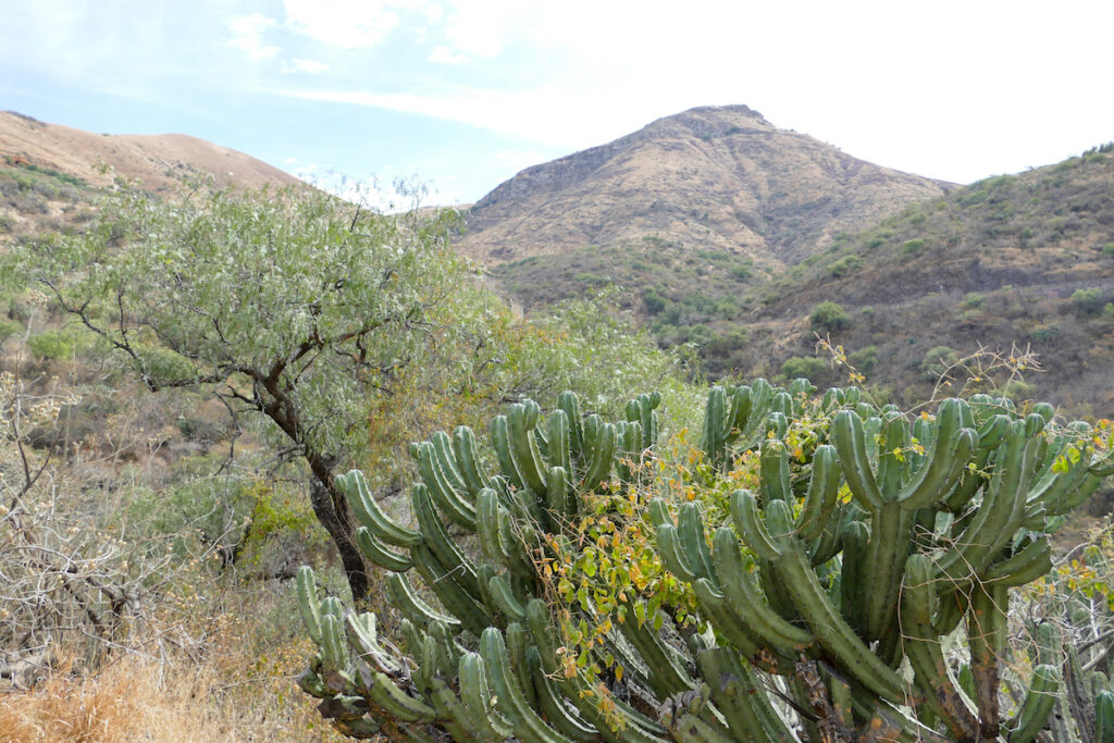 Guanajuato, Mellado, auf dem Weg zur Silbermine
