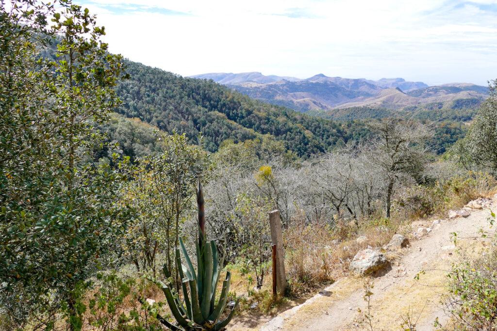 Guanajuato, Santa Rosa, unser Wanderweg