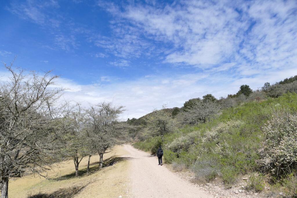 Guanajuato, Santa Rosa, zu gern waeren wir durch die Sierra nach Guanajuato weiter gewandert