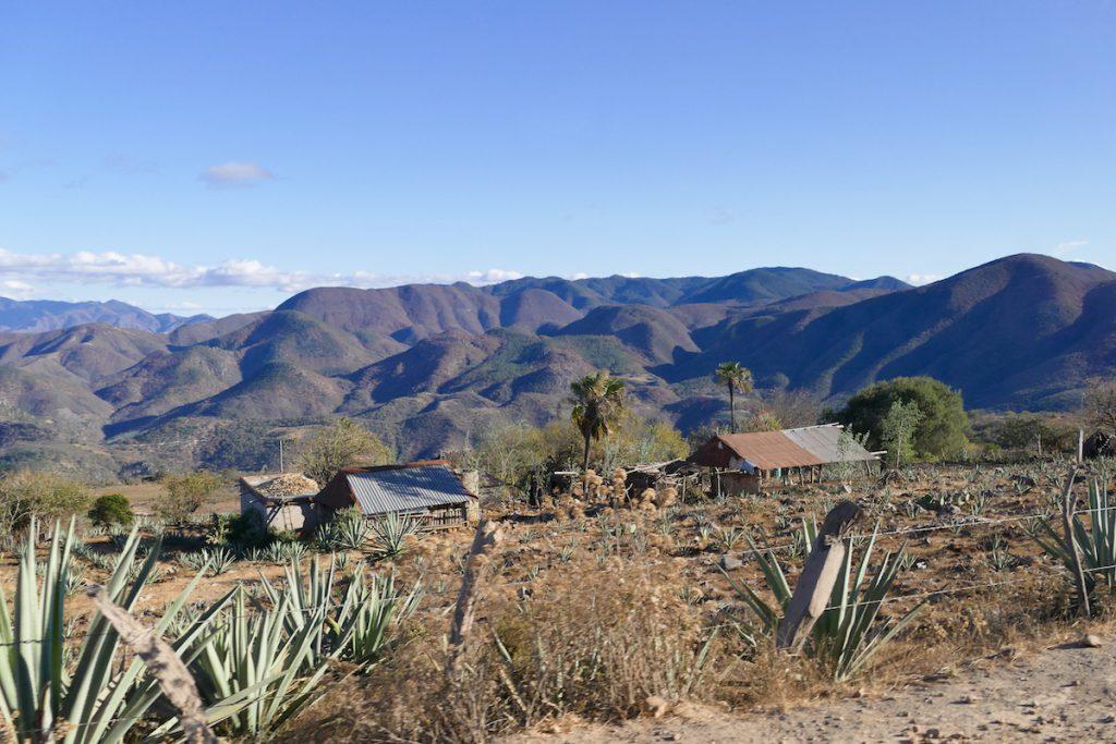 Hierve el Agua, eine Landschaft wie aus einem mexikanischen Bilderbuch