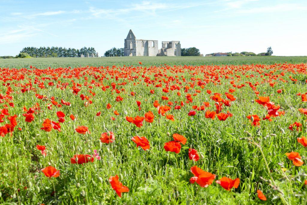 Ile de Re, Abbaye Notre Dame de Re