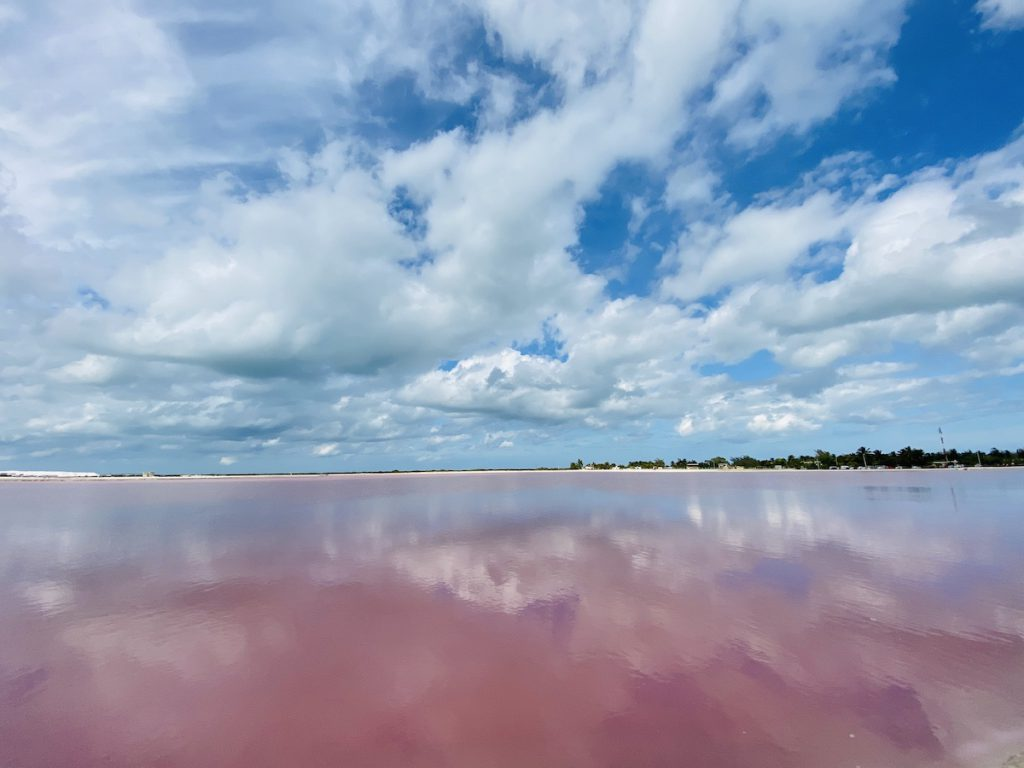 Las Coloradas, Pink Lake