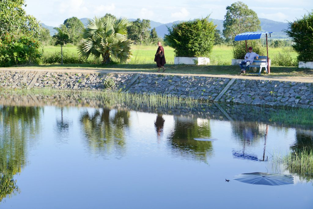 Umbrella Pond