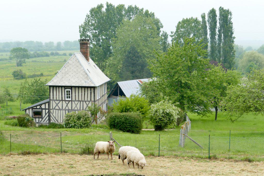 Marais-Vernier und seine Sumpfgebiet