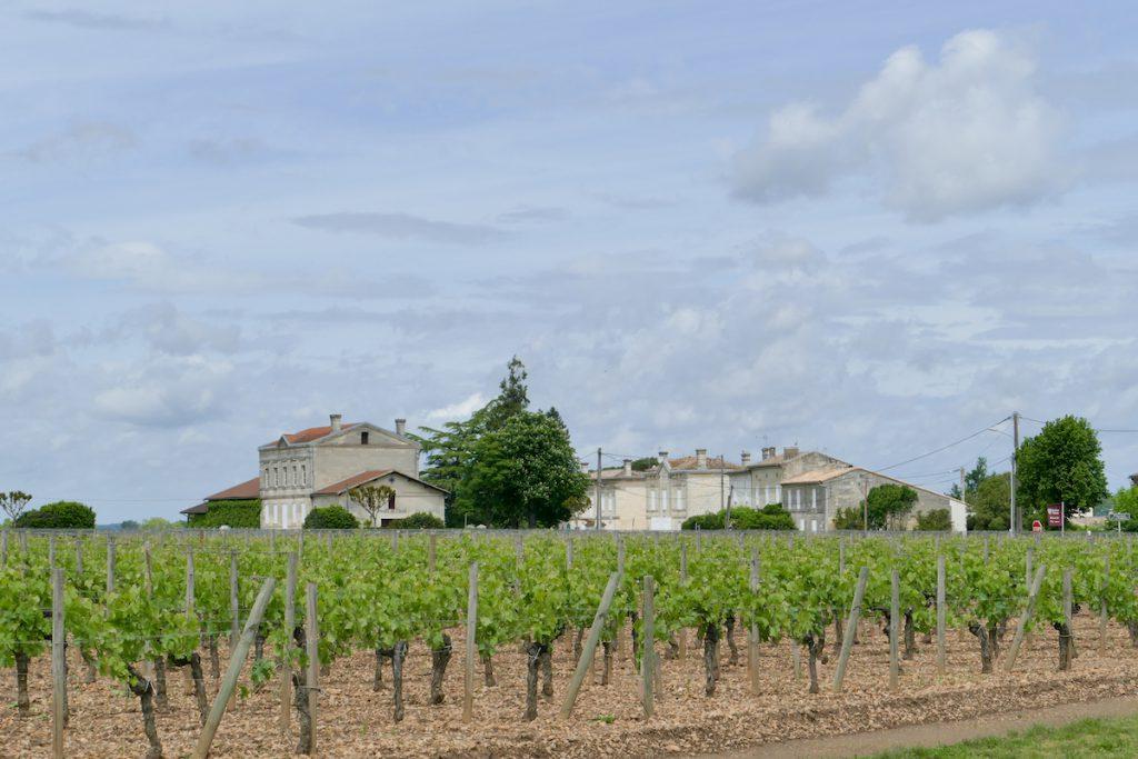 Zwischen Saint-Emilion und Bordeaux