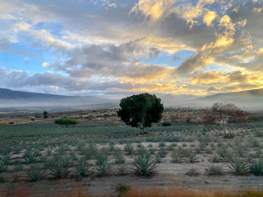 Oaxaca, Foto am Morgen aus dem Nachtbus heraus