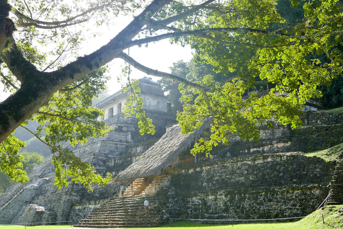 Palenque, Maya-Ruinen im Dschungel