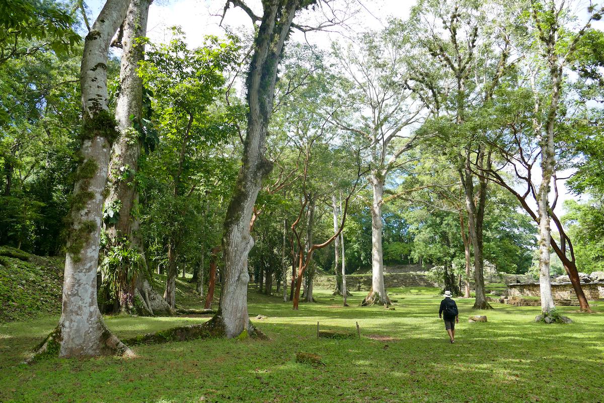 Palenque, Yaxchilan, La Gran Plaza