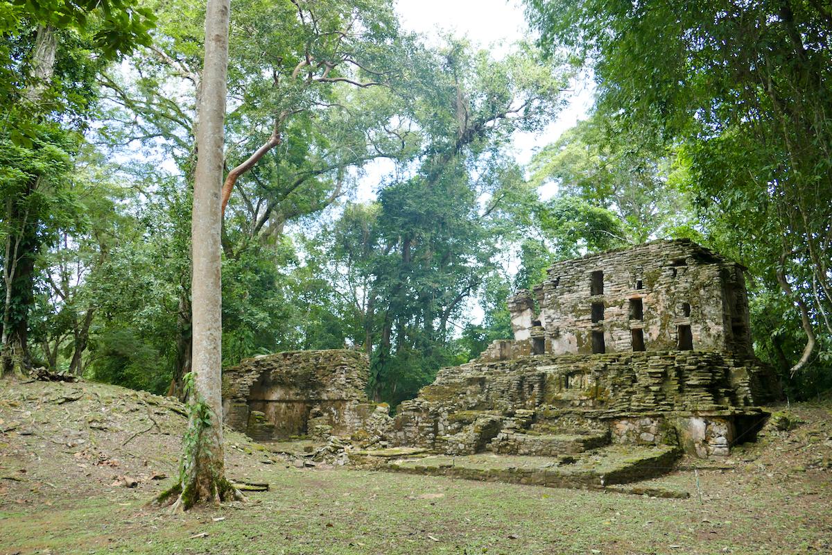 Palenque, Yaxchilan, ein fantastisches Erlebnis