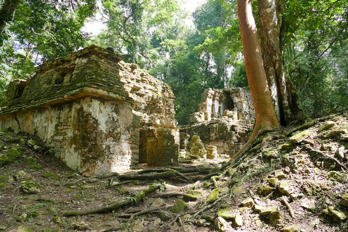 Palenque, Yaxchilan, wir sind fast allein hier
