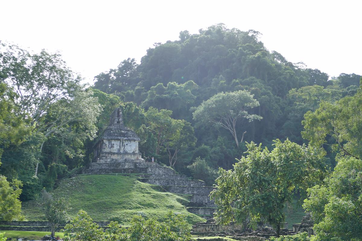 Palenque, Ruinen mitten im Dschungel