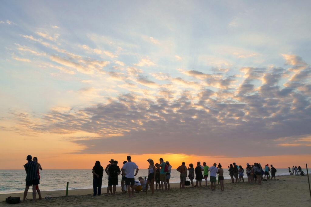 Puerto Escondido, Vive Mar, fuer uns alle ein unglaubliches Erlebnis