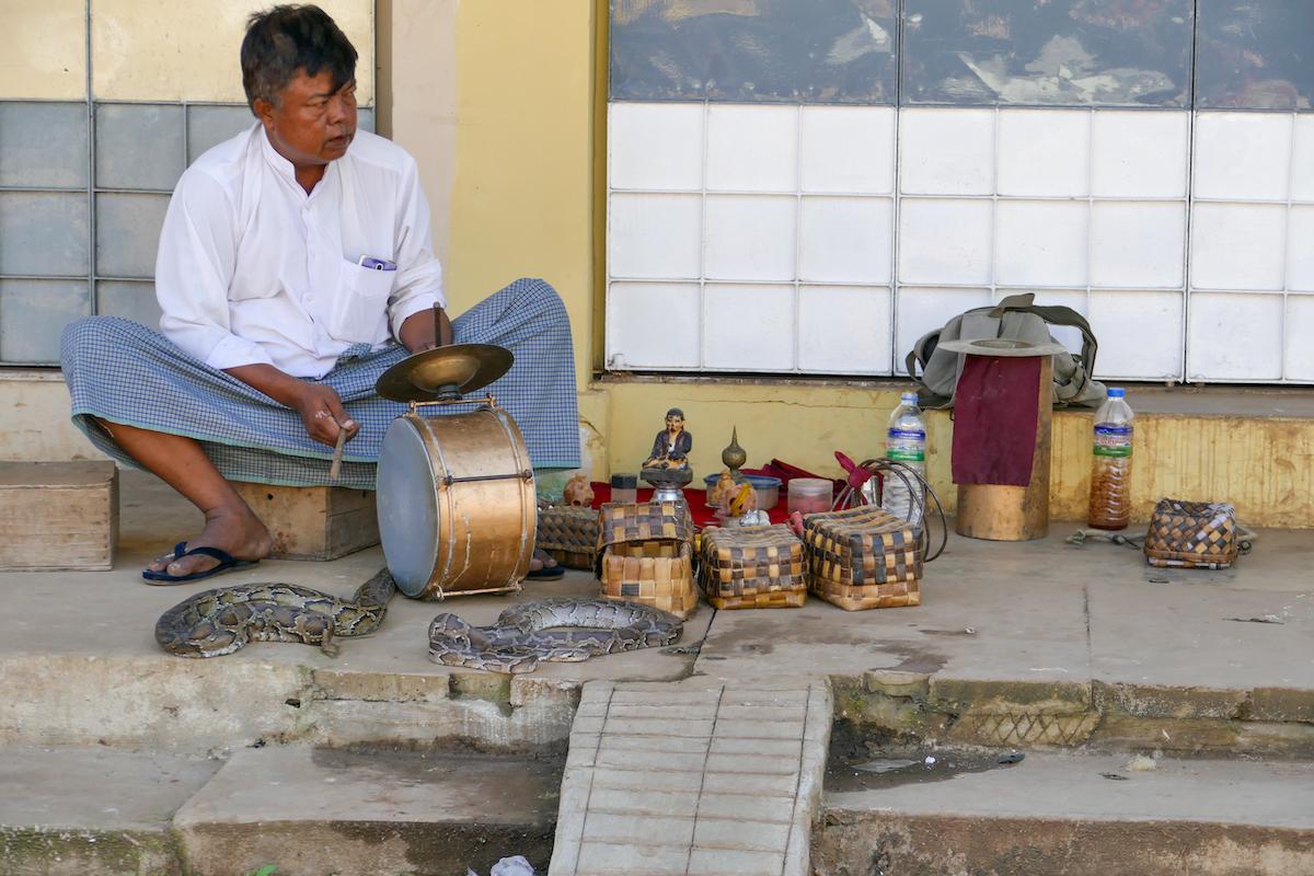 Pyin Oo Lwin, er hat seine Schlangen gut im Griff