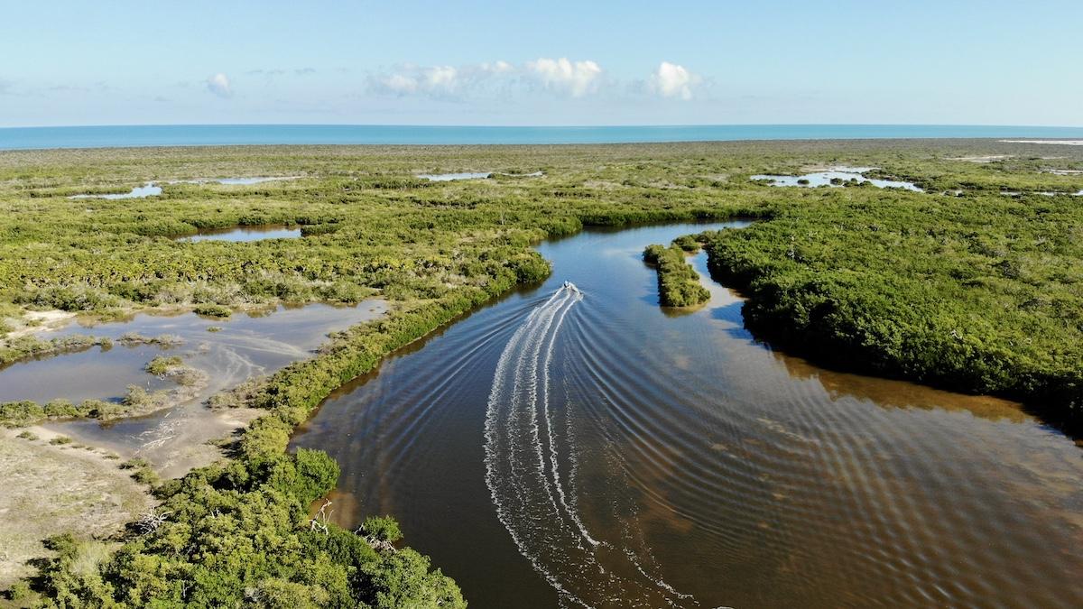 Rio Lagartos, Bootsfahrt durch die Lagunenlandschaft, photo credit Felix Feill