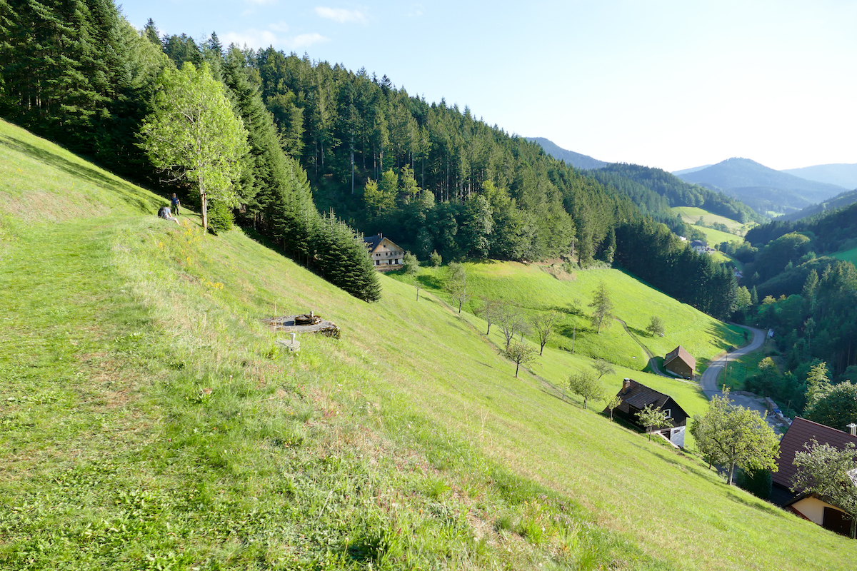 Wiesensteig, Schwarzwald at its best